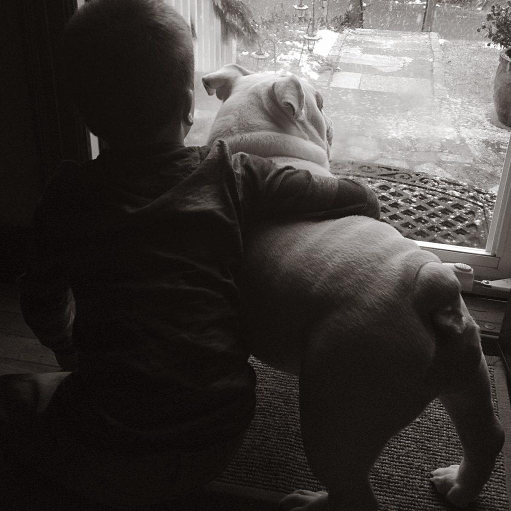 boyandbulldog bw